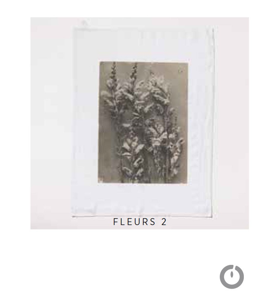 Torchon fleurs Serie limitée Louise